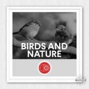 动物与大自然音效 – Big Room Sound Birds and Nature WAV-乐球网